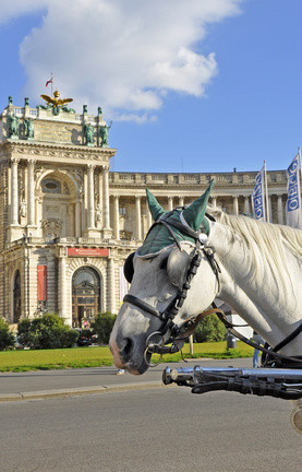 Fiaker (horse carriage) infront of Hofburg, the Imperial Palace