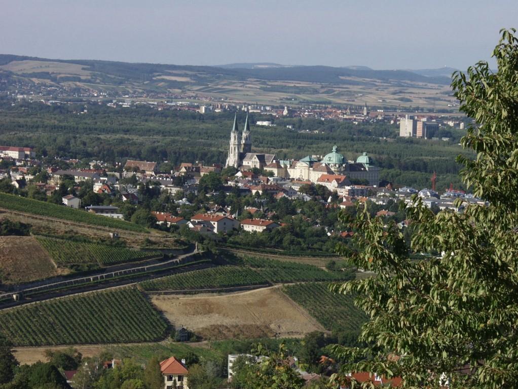 Klosterneuburg Vineyards