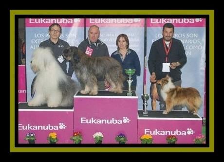 """De la nit Urssula love """" Urssula """" CAC, BOB & 3ªBOG"""