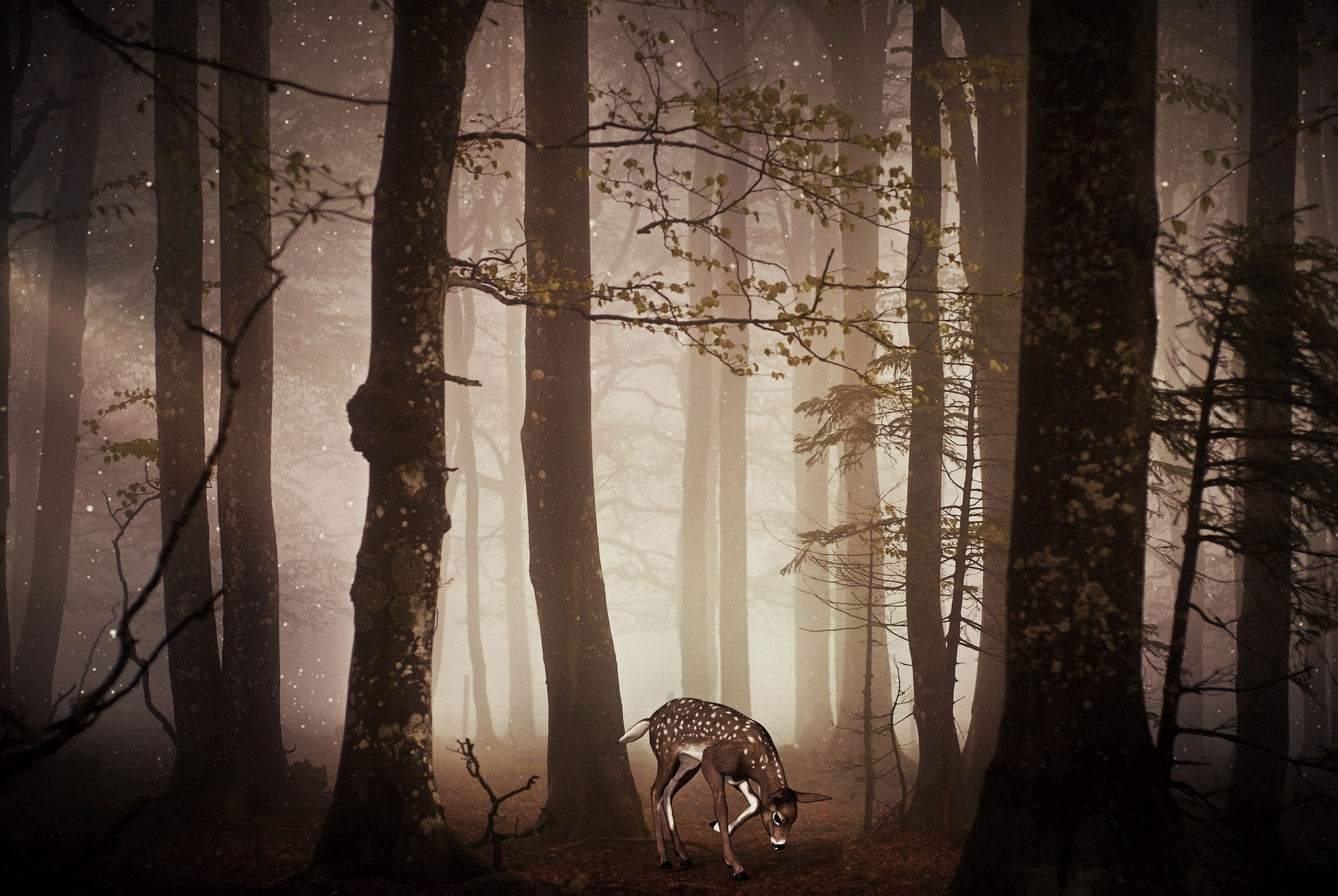 Waldtag mit allen Sinnen erspielen