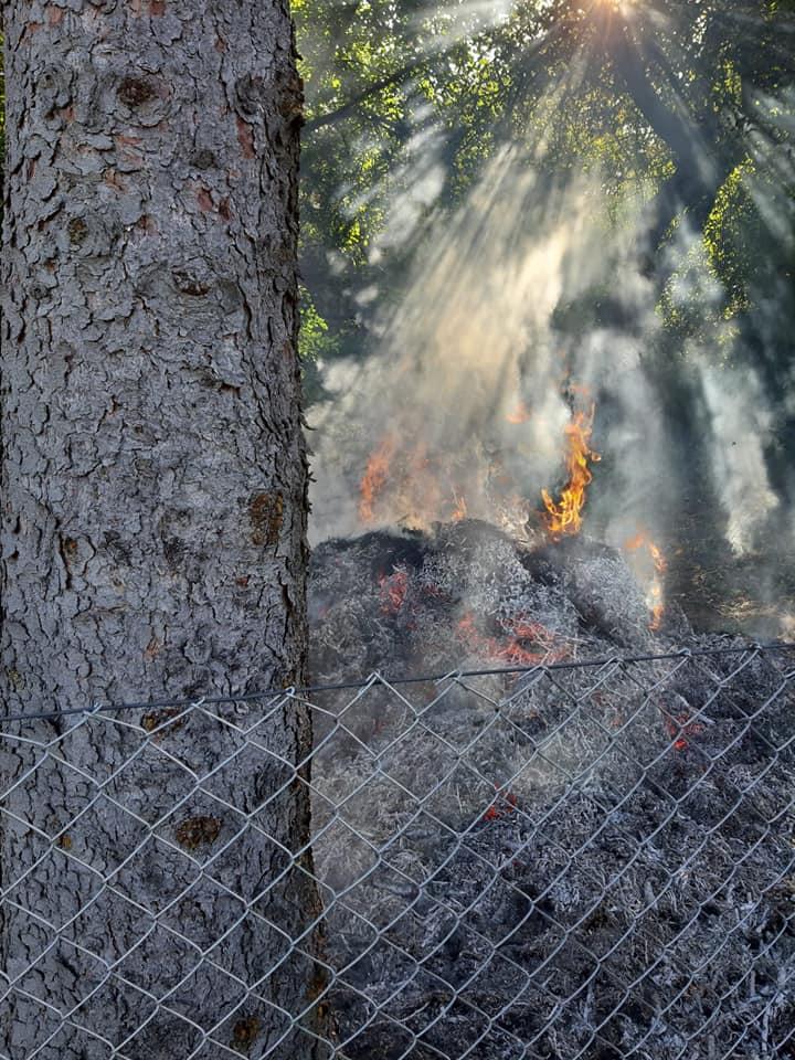 Es stellte sich heraus das ein Komposthaufen in Brand geraten ist und das Feuer drohte auf mehrere Bäume und auf das dichte Gestrüpp überzugreifen.