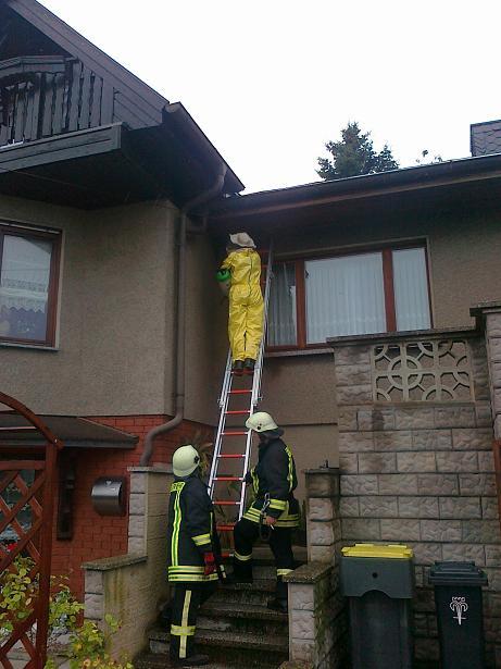 Unsere Feuerwehr im Insekteneinsatz, wenn Wespen für Allergiker zur Gefahr werden!