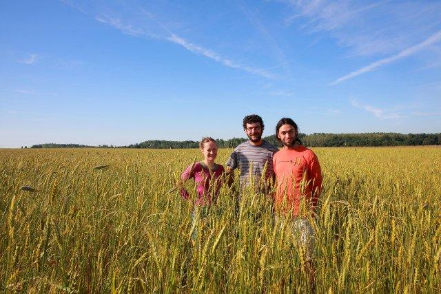 MARION, NICOLAS et CLEMENT les trois associés du GAEC Il était une ferme.