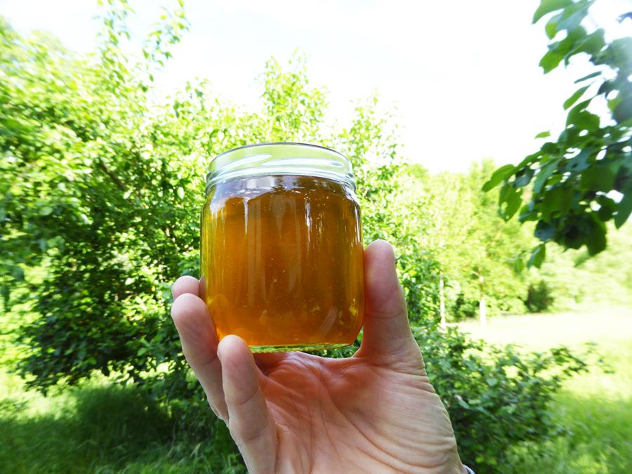 Der Honig ist, von kleinen Luftblasen abgesehen, völlig klar.