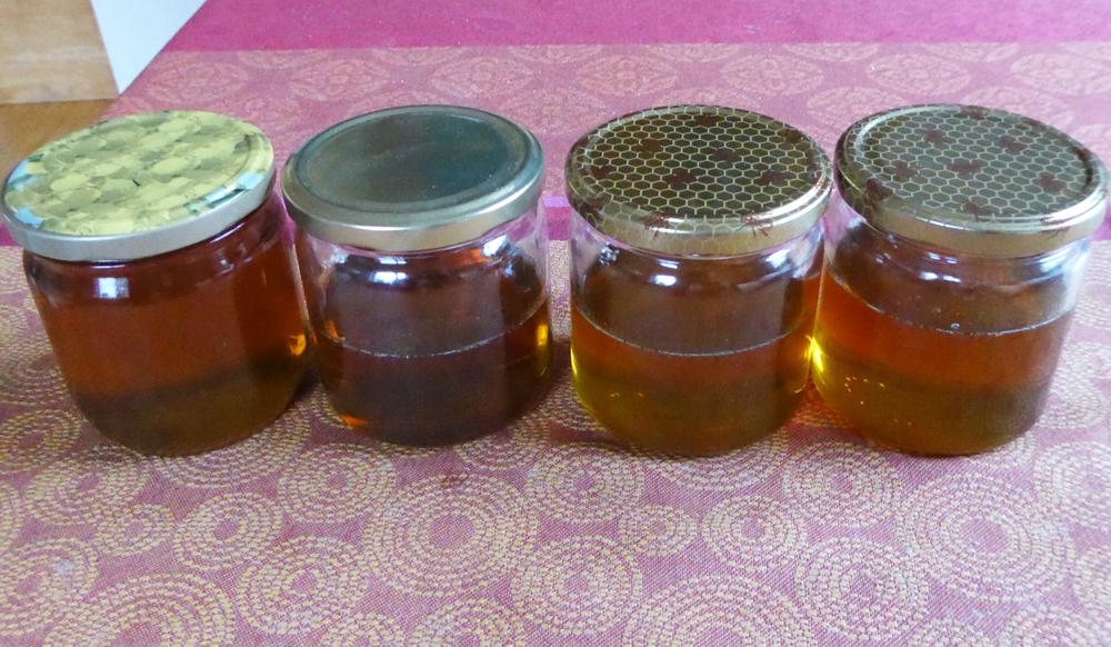 Das war leider schon die ganze Ernte aus drei Kunststoffwaben: Zweieinhalb Gläser Honig. Jede Wabe bietet Platz für sechs Pfung Honig.