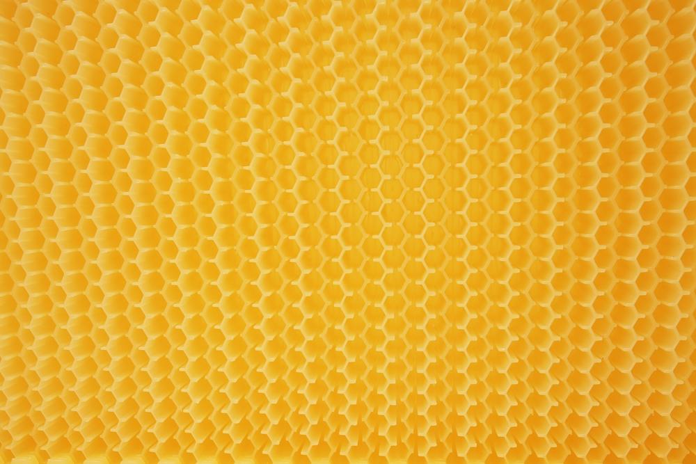 Die lebensmittelechten Kunststoffwaben sind, wie man sieht, nicht ganz geschlossen, sondern die Zellen haben oben und unten einen schmalen Spalt, der von den Bienen mit Wachs verschlossen wird.