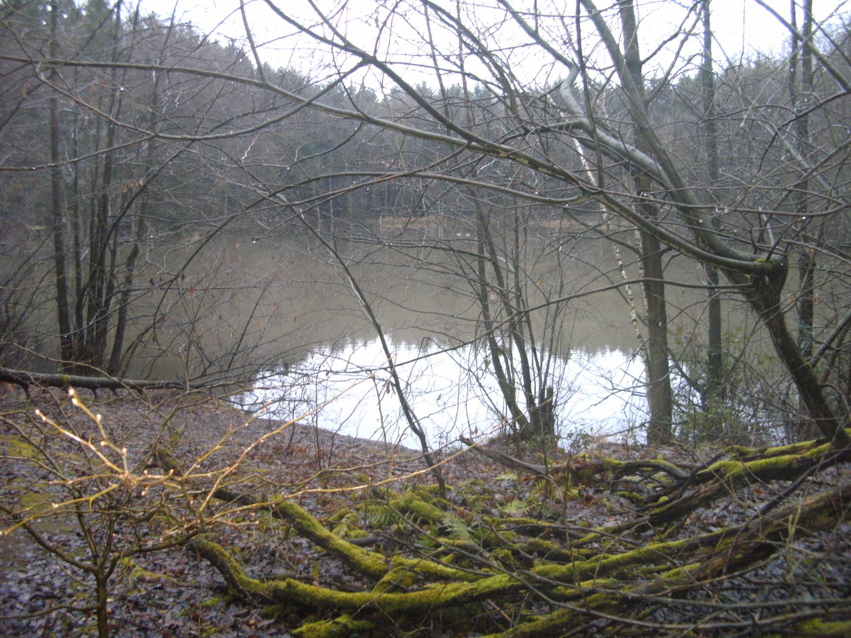 Aus der Tongrube entstand, auf der ehemaligen Trasse, ein See (ca 15m. tief)