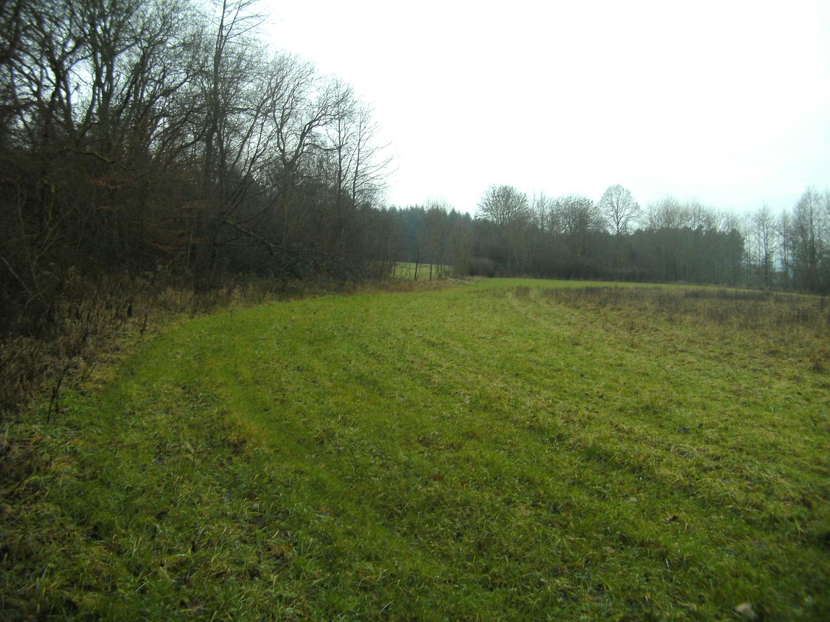 Unterhalb eines Abraumügels ist die Trasse schwer zu erkennen (Links entlang der Hecken)