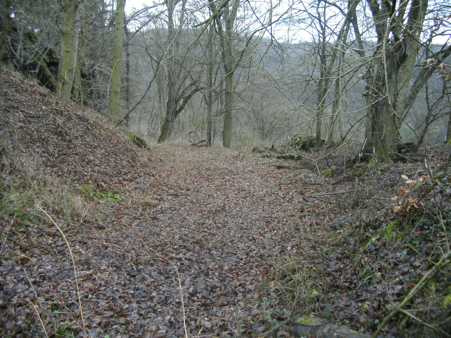 Blick Richtung Eschenau: Kurz vor dem Steinbruch