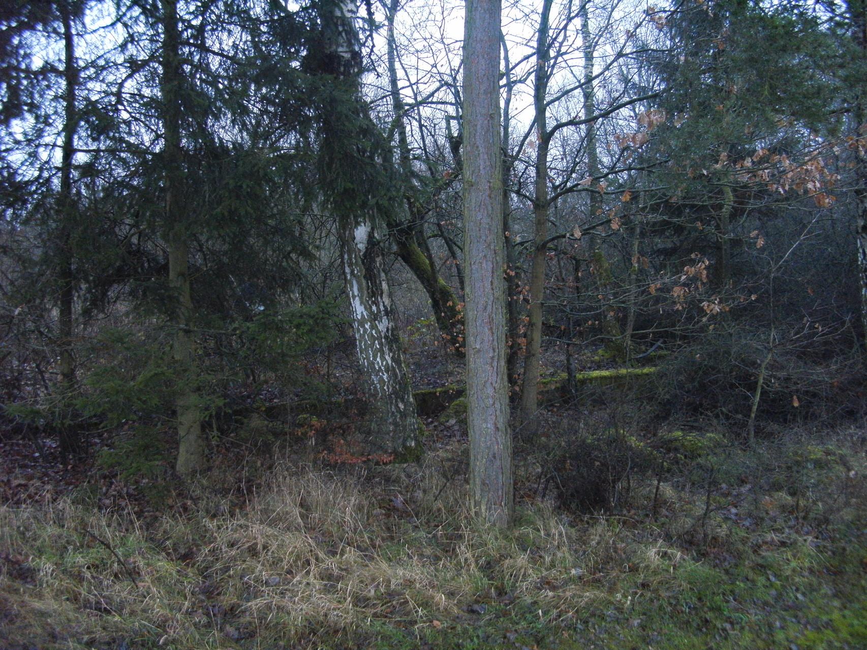 An der Straße Niedertiefenbach - Schupbach sieht man noch Grundmauern der Ton- Firma