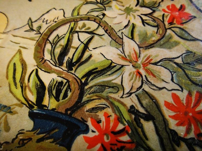 Красочные цветы на обложке
