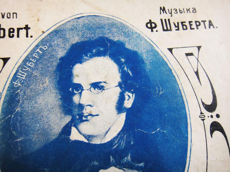 Портрет Шуберта