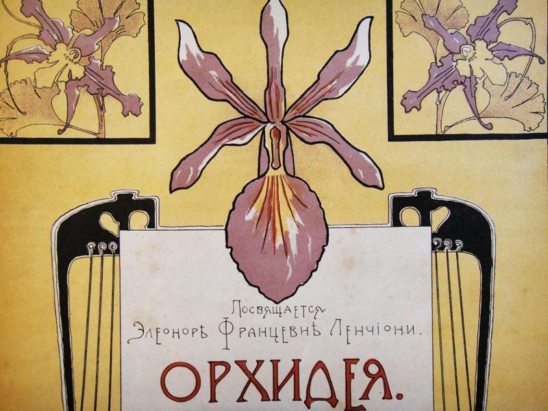 Орхидея, старинный рисунок в стиле art nouveau (художник В. Шене)