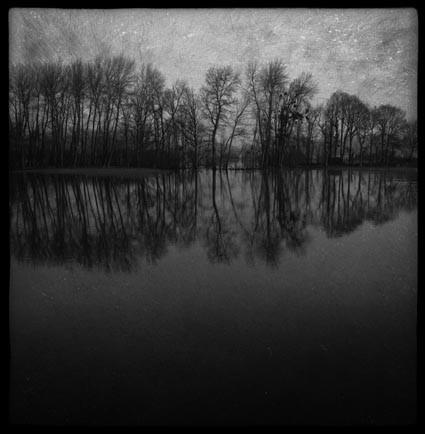 Ourscamp, Oise - Mnémosis series by Philippe Bréson
