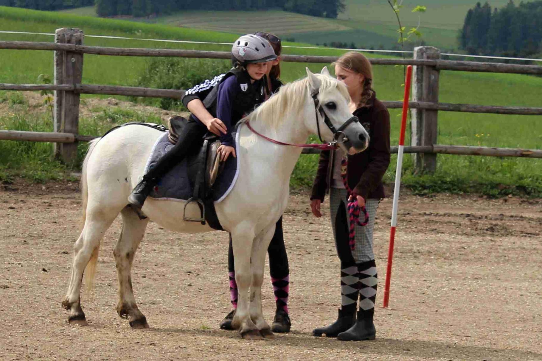 korrektes Absteigen vom Pony