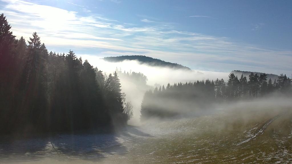 so schön kann Nebel sein
