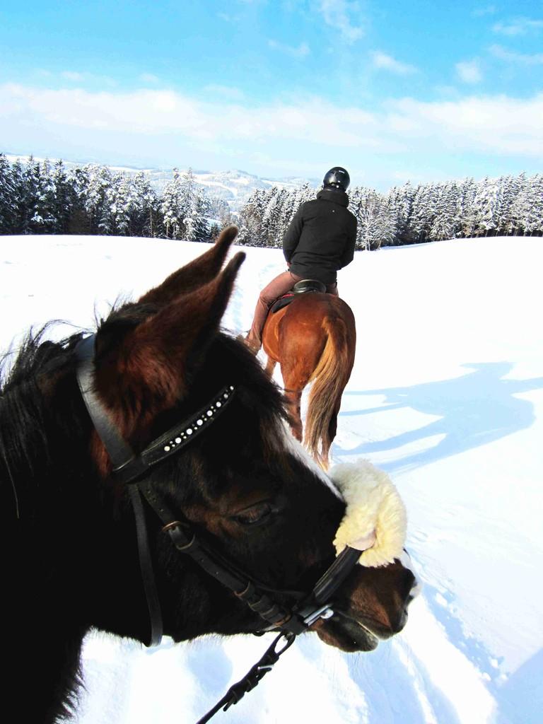 Wallhalla im Schnee