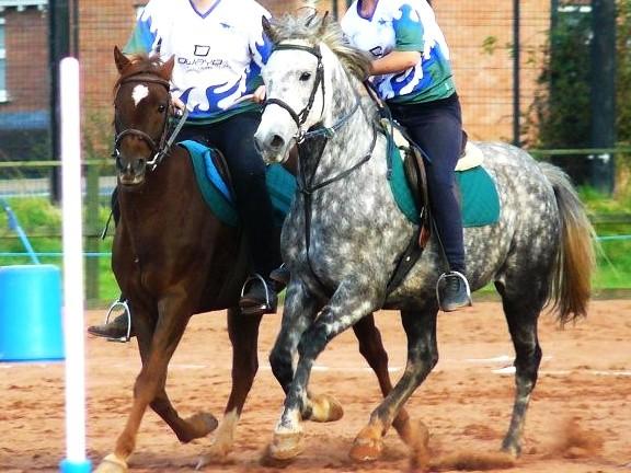 Pony Pairs
