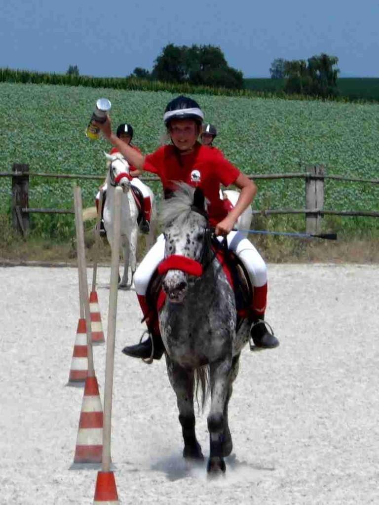 Armani bei den Mounted Games  - Carton Race