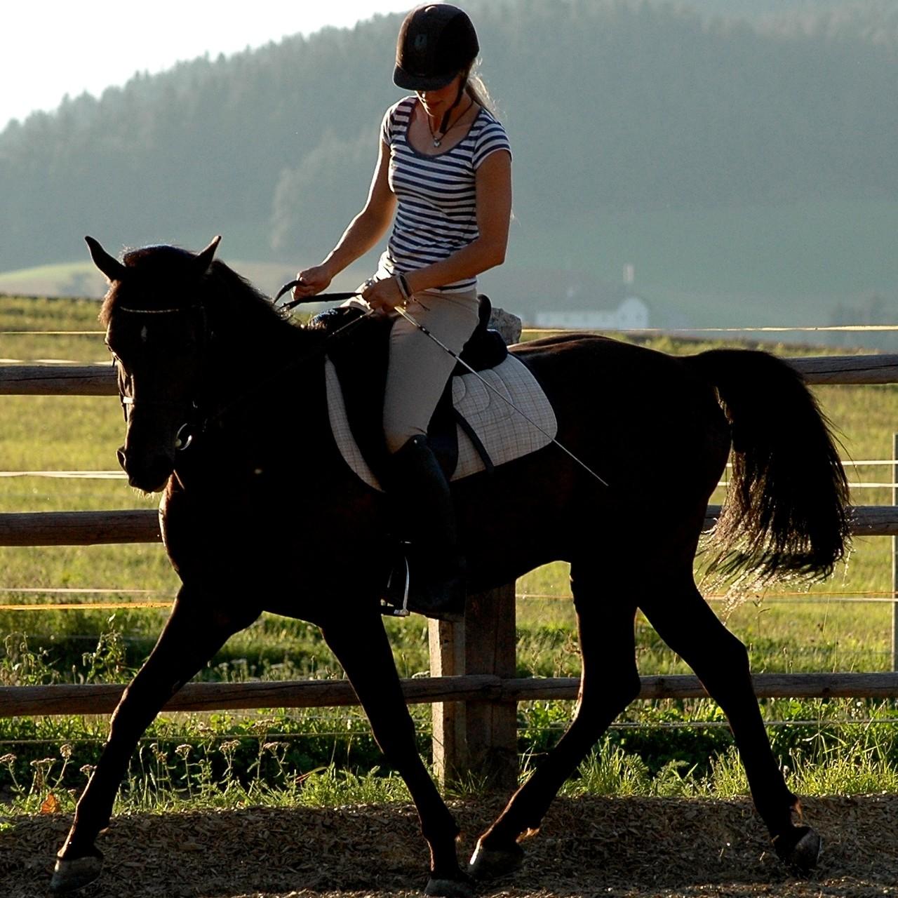Sharkan und Verena beim Training am Ponyhof