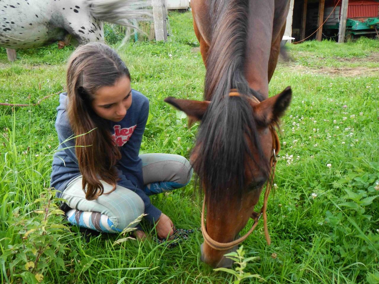 Grasen gehen mit Pony