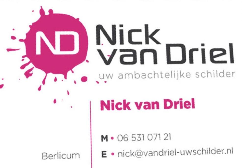Schilder Nick van Driel