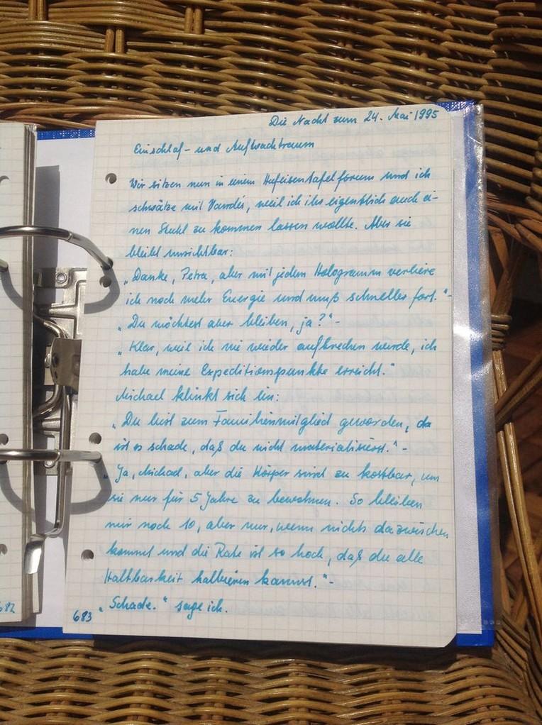 Petra Mettke/Gigabuch Michael 10/Originalordner/1995/Notat 439 auf Seite 683