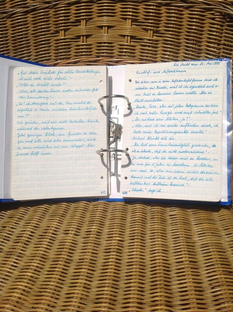 Petra Mettke/Gigabuch Michael 10/Originalordner/1995/Seiten 682-683
