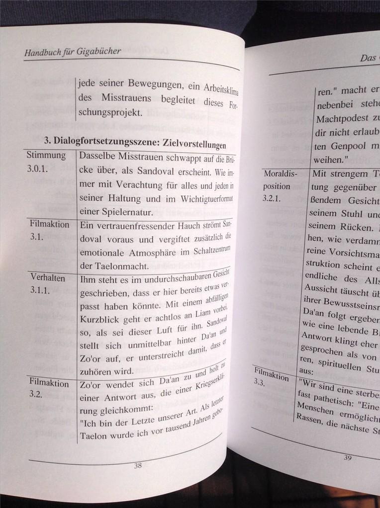 Karin Mettke-Schröder, Petra Mettke/Literarisierungstechnik für Großstoffe/Handbuch 4/2004/Seite 38