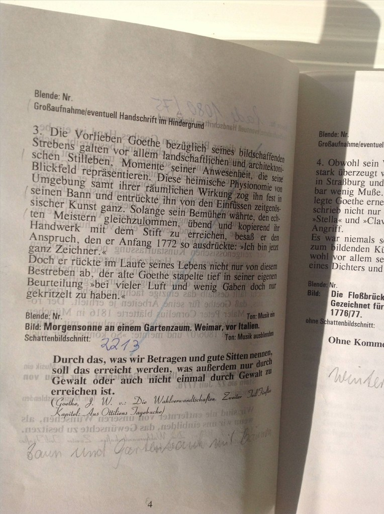 Petra Mettke, Karin Mettke-Schröder/Die Magie des Zeichners Goethe/Drehbuch/1999/Seite 4