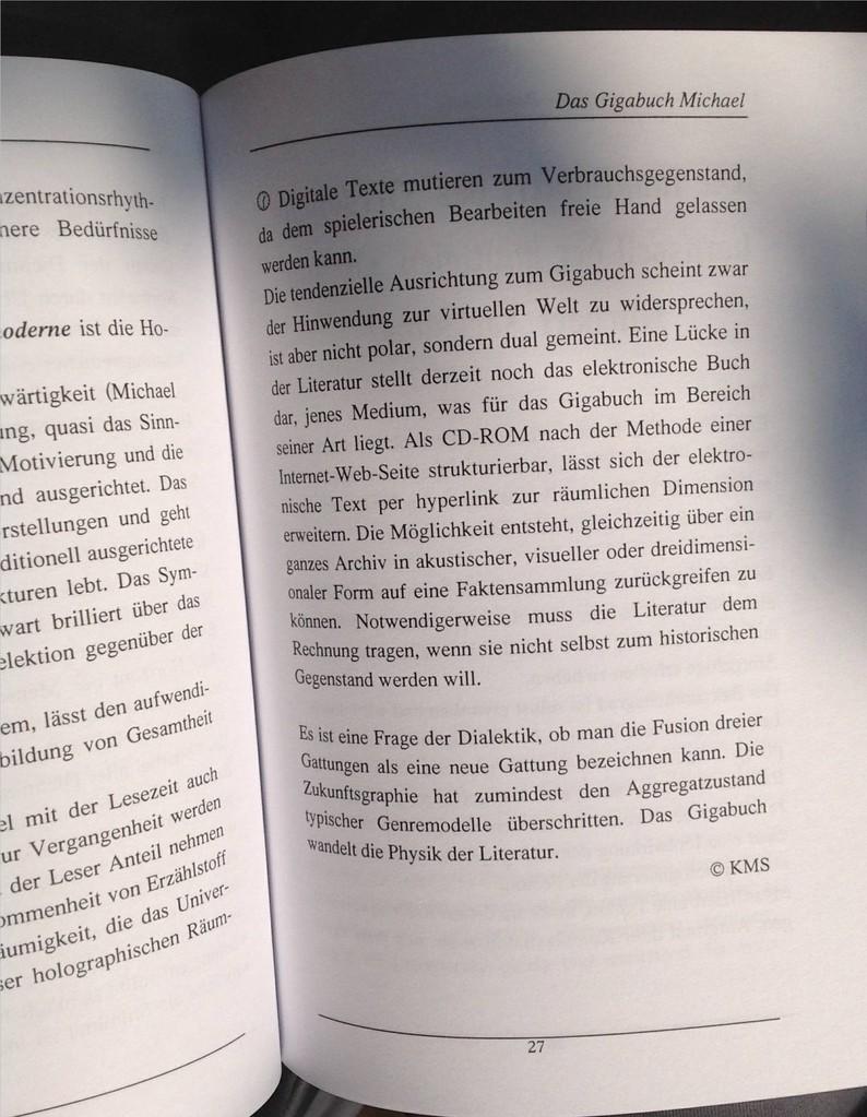 Karin Mettke-Schröder/Das Gigabuch Michael/Broschürefassung von 2003/Seite 27