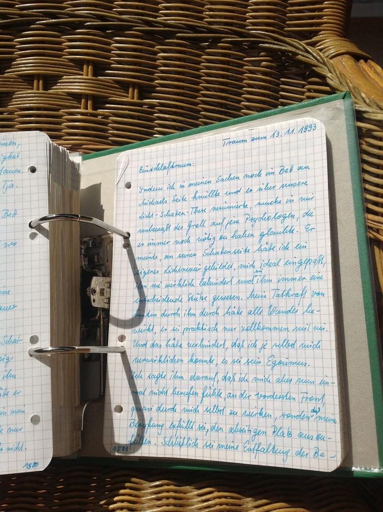 Petra Mettke/Gigabuch Michael 04/Originalordner/1993/Notat 218 auf Seite 1581