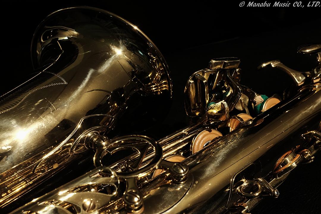 Alto Saxophone X100T