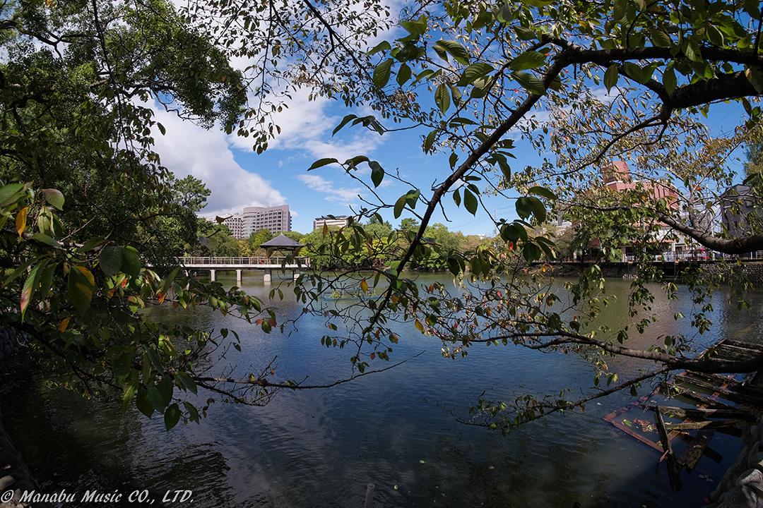鶴舞公園「竜が池」 X-E2 samyang 8mm F2.8