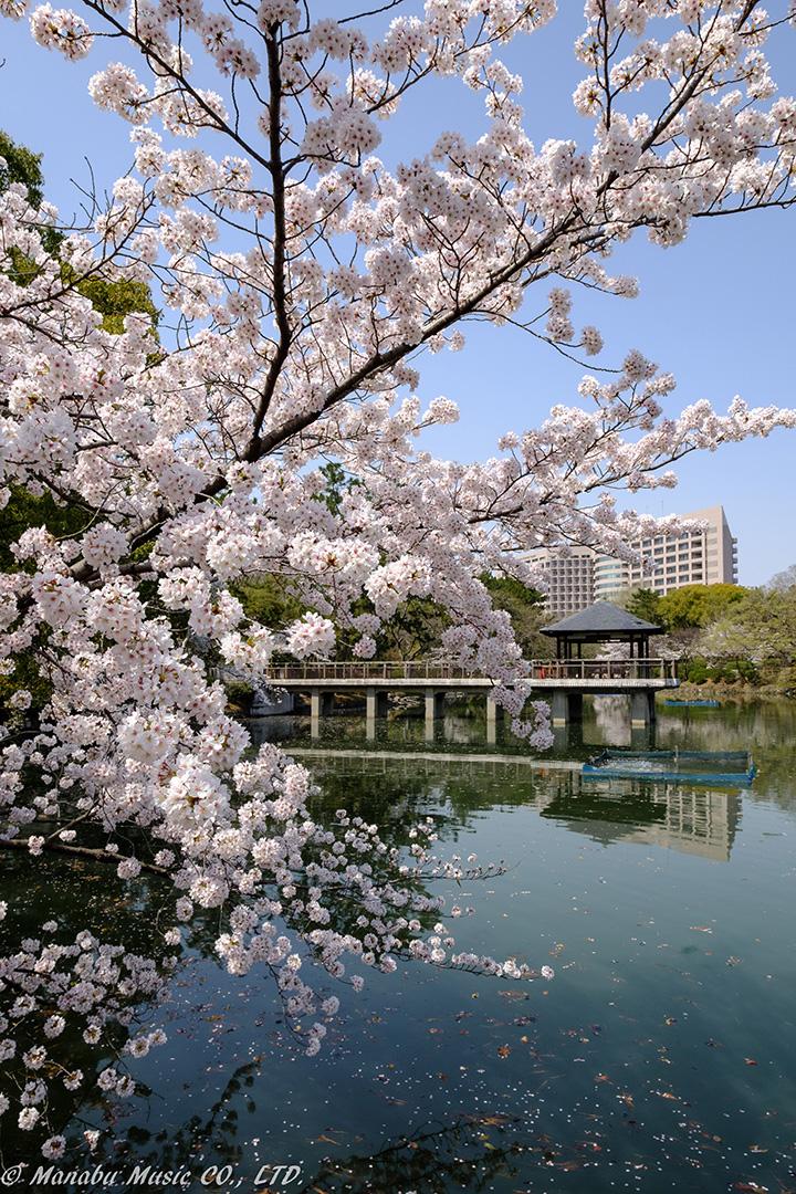 名古屋市鶴舞公園「竜が池」 X-T2 XF10-24mm