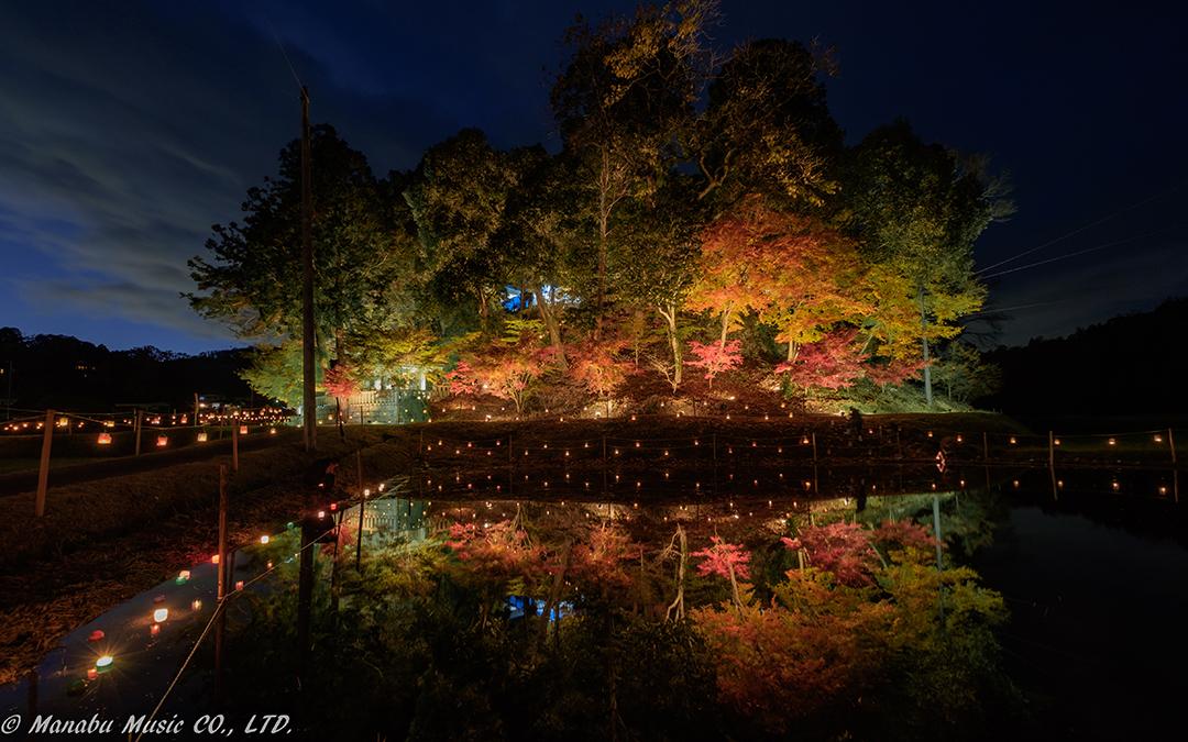 豊田市藤岡、木瀬八柱神社の紅葉ライトアップ  X-E2 XF10-24mm