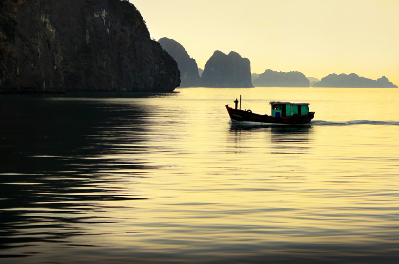 """<span style=""""color:#666666!important;""""> Halong  -  ©  -  2009 </span>"""