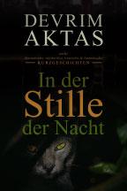 In der Stille der Nacht (Kurzgeschichtensammlung)