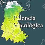 Palencia Micolígica