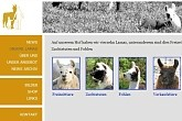 Kluser Lamas in Aesch