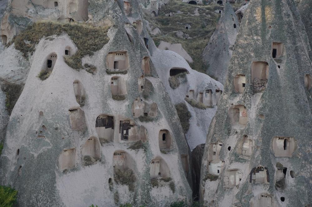 Hier wonen dus duiven