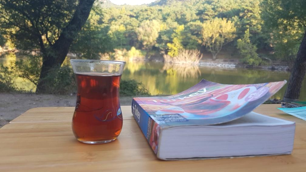 Turkse thee van onze buren