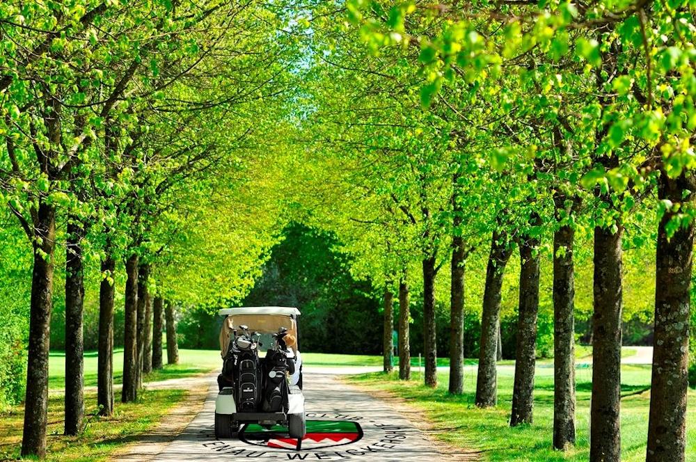 Allee Golfplatz Lichtenau-Weickershof