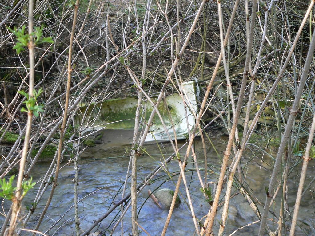 Marzo 2011 .....teniamo puliti i nostri fiumi, non ci vuole tanto (vasca da bagno trovata nel fiume Roncaglia)