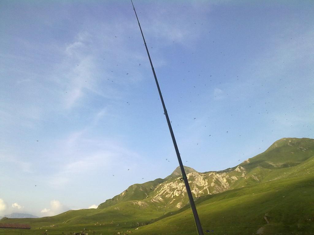 MESE DI GIUGNO 2010..... Oltre all'apertura dei laghetti alpini, a fare compagnia al nostro socio, si sono state le aperture (schiuse) della serratella ignita. (effimera alata)