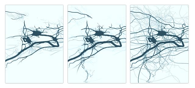 Desarrollo de las redes neuronales después de un tiempo de entrenamiento.