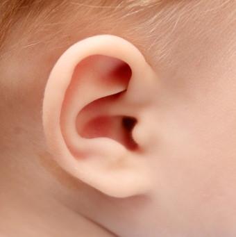 Pabellón auricular de un niño.