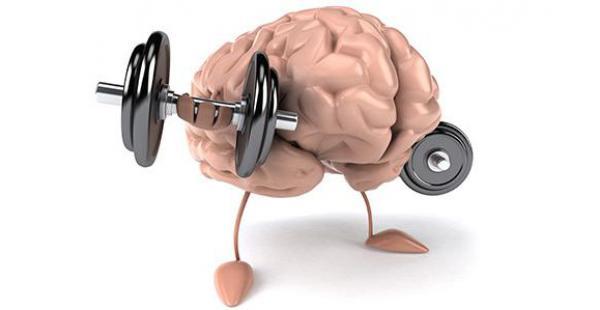 Ejercitar el cerebro, fundamental para que se mantenga el sistema auditivo en forma.