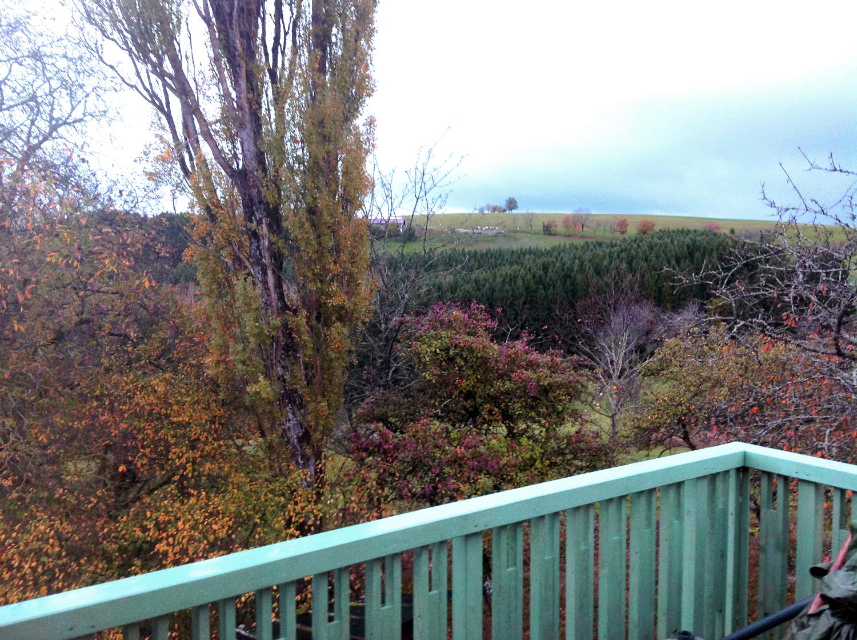 Der Ausblick von der Terrasse der Ferienwohnung