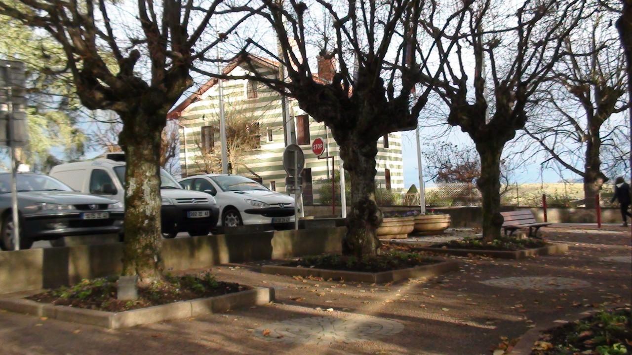 les arbres de Sorbiers attendent leurs visages...
